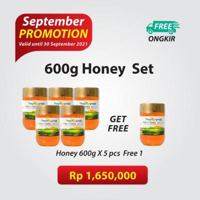 Mature Honey 600g